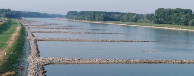 Niedrigwasser bei Karlsruhe Maxau im September 2018. Durch den niedrigen Wasserstand sind die Kiesbuhnen zu sehen.